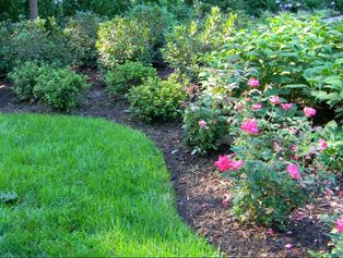 cummings landscaping